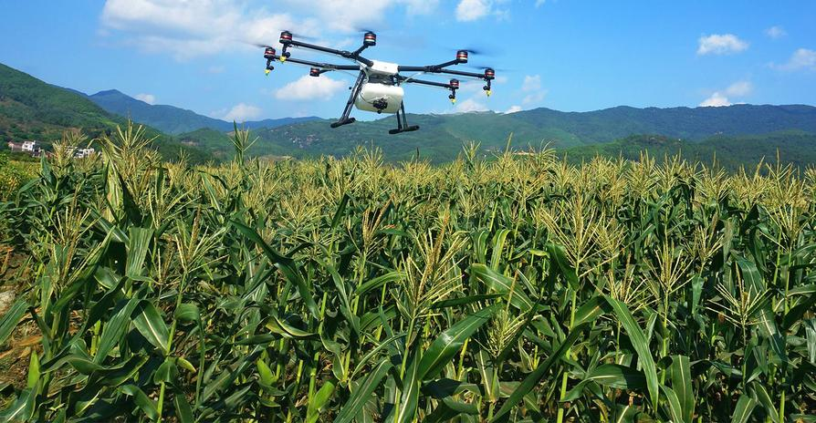 Drones for Agriculture – Current Applications | Emerj